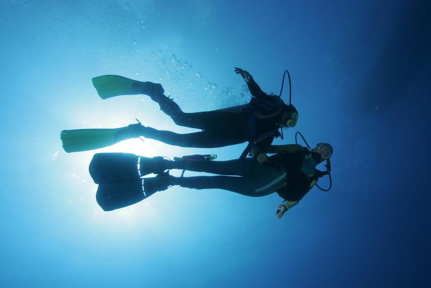 Taucher im freien Wasser Divers in the water 