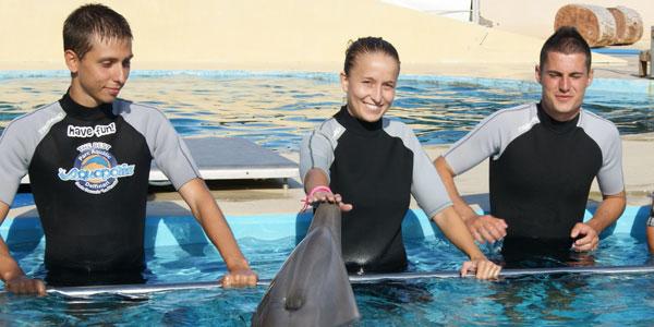 nadar con delfines tarragona
