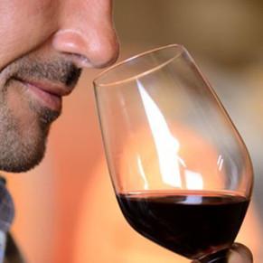 Visita a Bodega y Cata de Vinos para dos (Tarragona)