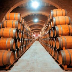 Visita a las Bodegas Irache con Degustación de Vinos y Aperitivo para dos (Navarra)