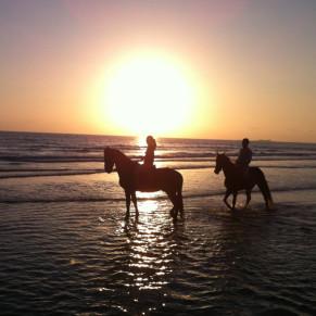 Paseo a Caballo por la Playa (Cádiz)