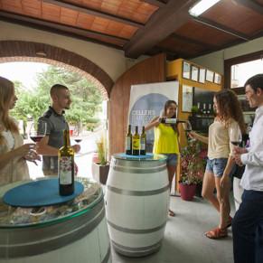 Visita a Bodega y Cata de Vinos con Aperitivo para dos en Cellers Baronia del Montsant (Tarragona)